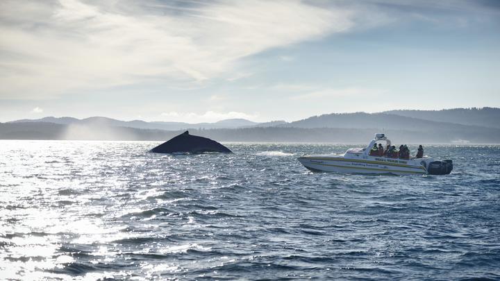 Не считали ситуацию тяжёлой: Американки полгода дрейфовали в океане, так и не включив маяк