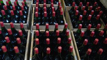 От винопития к раку: Ученые нашли новые болезни, связанные с алкоголем
