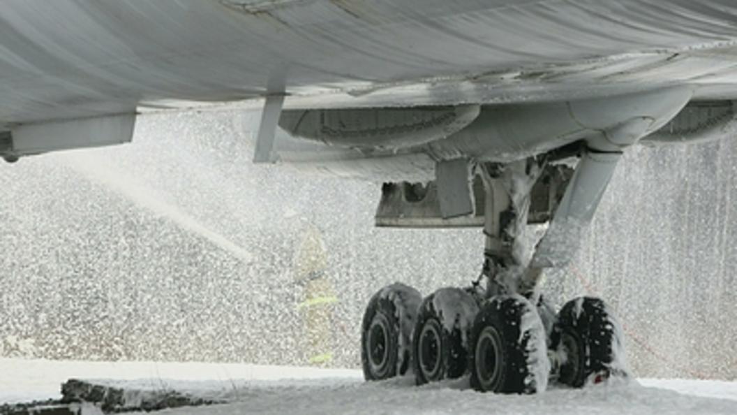 Курсант смог посадить самолет без шасси после попадания птицы в мотор