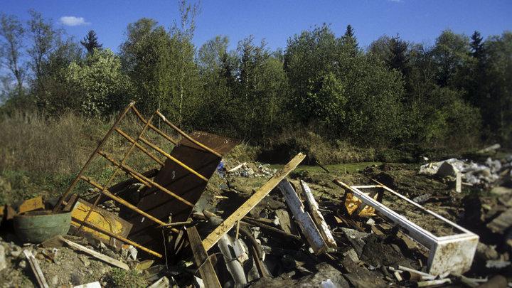 «Это временно»: В Подмосковье граждан призвали не волноваться из-за еще одной свалки