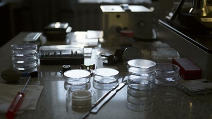 Российские ученые поставили рекорд продления жизни онкобольным