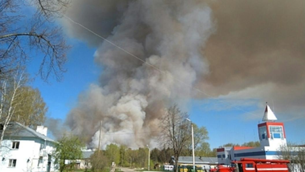 Пожар на военном полигоне в Удмуртии: Что известно на этот час