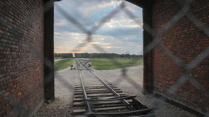 Порошенко-стайл: В штукатурке школы в Ковеле нашли останки жертв нацистского концлагеря