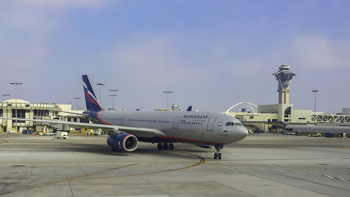 Она билась десять минут и истошно кричала: Таиландского наркокурьера сняли с самолета в Москве