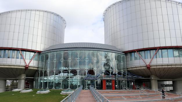 ЕСПЧ запросил у правительства РФ объяснений за нелюбовь к свастике