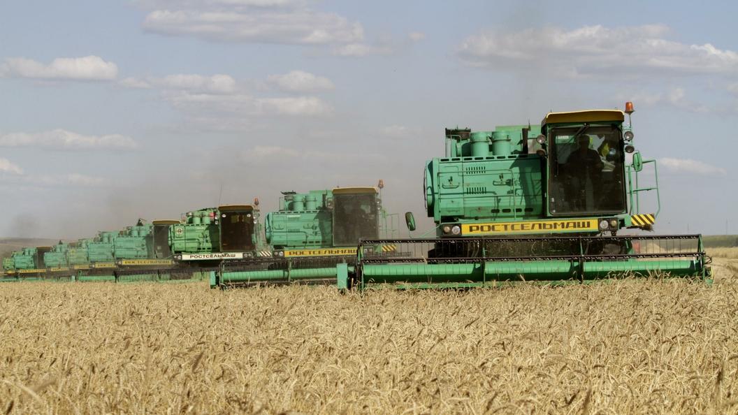 Российская Федерация направит избытки урожая зерна вкачестве гуманитарной помощи