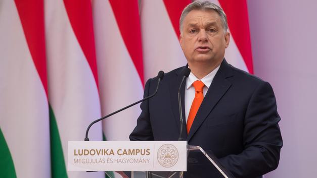 Помог мигранту - сел: В Венгрии придумали новый способ борьбы с нелегалами