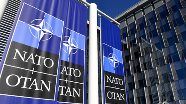 Вспомнив историю СС, НАТО выставило против России в Прибалтике новую дивизию