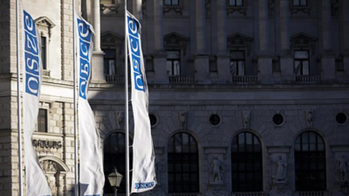 Русская делегация покинула совещание парламентской ассамблеи ОБСЕ