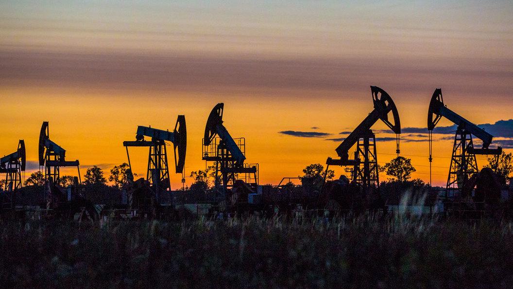 Геннадий Шмаль: Спасти четырех китов нефтегаза