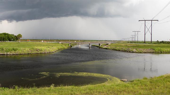 Губернатор Флориды объявил режимЧС из-за токсичного цветения воды