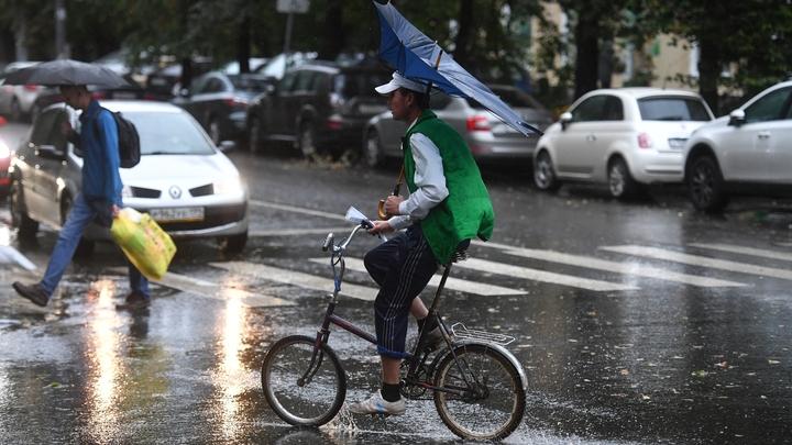 Москвичей предупредили о шквалистом ветре, ливне и грозе