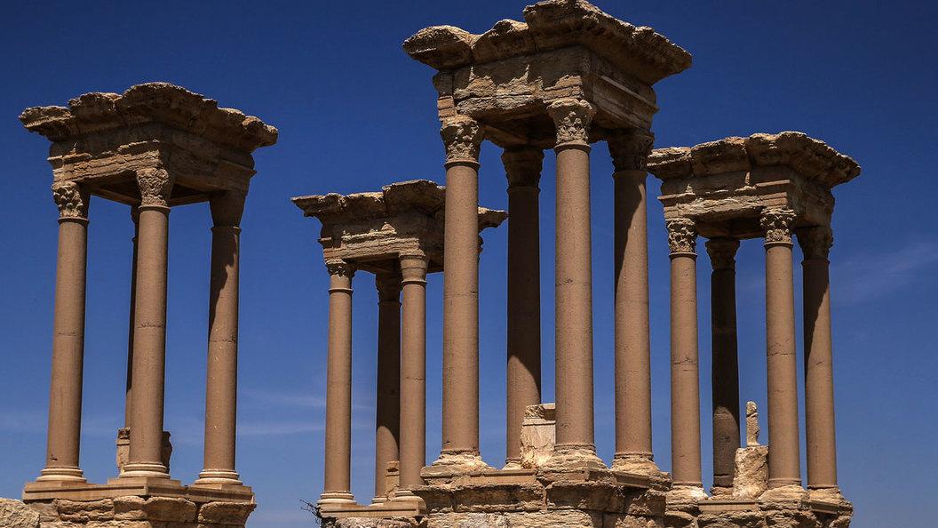 Черные с черными: Западные археологи грабили Пальмиру