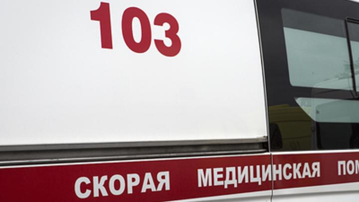 Из покореженного автобуса извлекли тела пассажиров: Число жертв аварии под Воронежем увеличилось