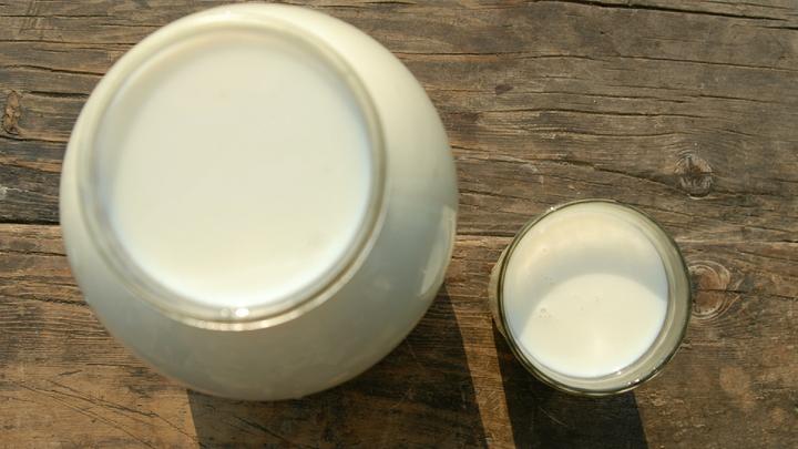 Антибиотики и кишечная палочка: Роскачество изучило магазинное молоко