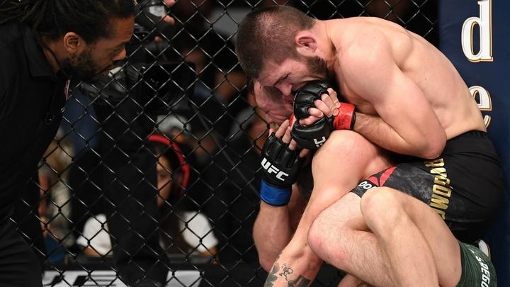 UFC временно отстранил Нурмагомедова и Макгрегора