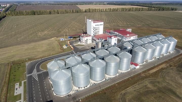 «Беспрецедентный объем воровства»: У государства украли 19 тысяч тонн зерна