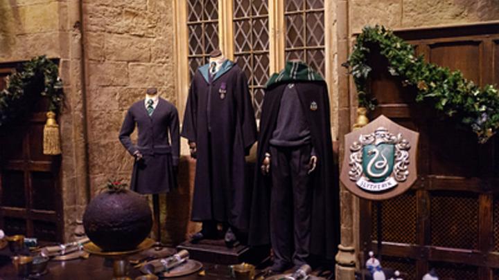 В России появился собственный «Хогвартс»: Вселенную «Гарри Поттера» внедрили в обычном лицее
