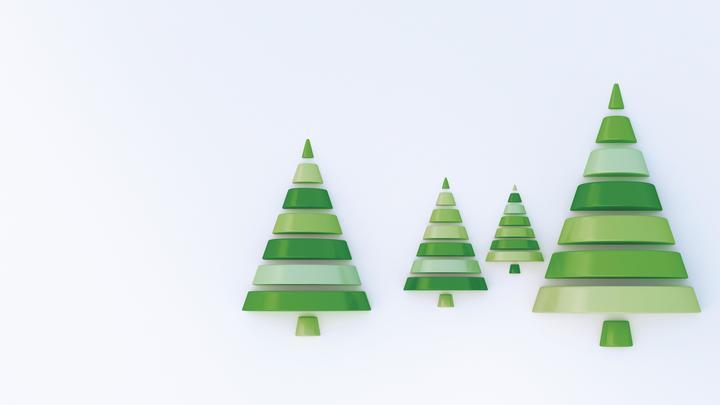 Ствол без темной каймы и эластичные ветки: Роскачество дает советы по выбору идеальной новогодней елки