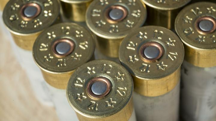 Порох и капсюли для патронов под замок: Новые правила хранения оружия в России