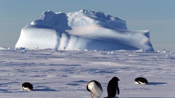 Вечная мерзлота Антарктиды скрывала вулканы, опасные для населения Земли - эксперты