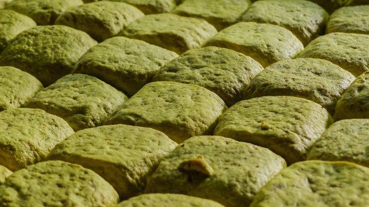 Только если больше 1%: ВРоссии будут маркировать продукты сГМО вобязательном порядке