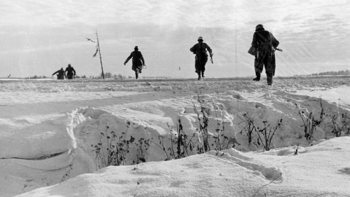 Плохо воевали, пили и грабили церкви: Немецкий историк развенчал миф об успешных войсках СС