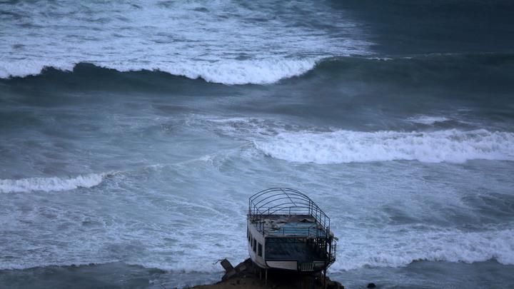 Гигантский сом заставил десятки тысяч людей вТаиланде покинуть свои дома