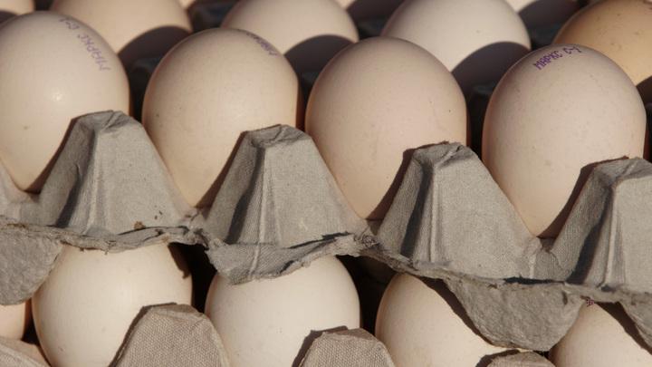 Так вот куда оно делось из магазинов: В Instagram нашли самое популярное яйцо, оставившее девяток