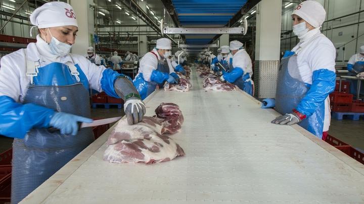 В России после курицы резко подорожает свинина