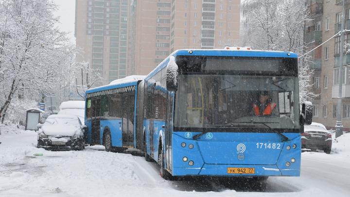 РЖД поможет купить билет на автобус онлайн - источник