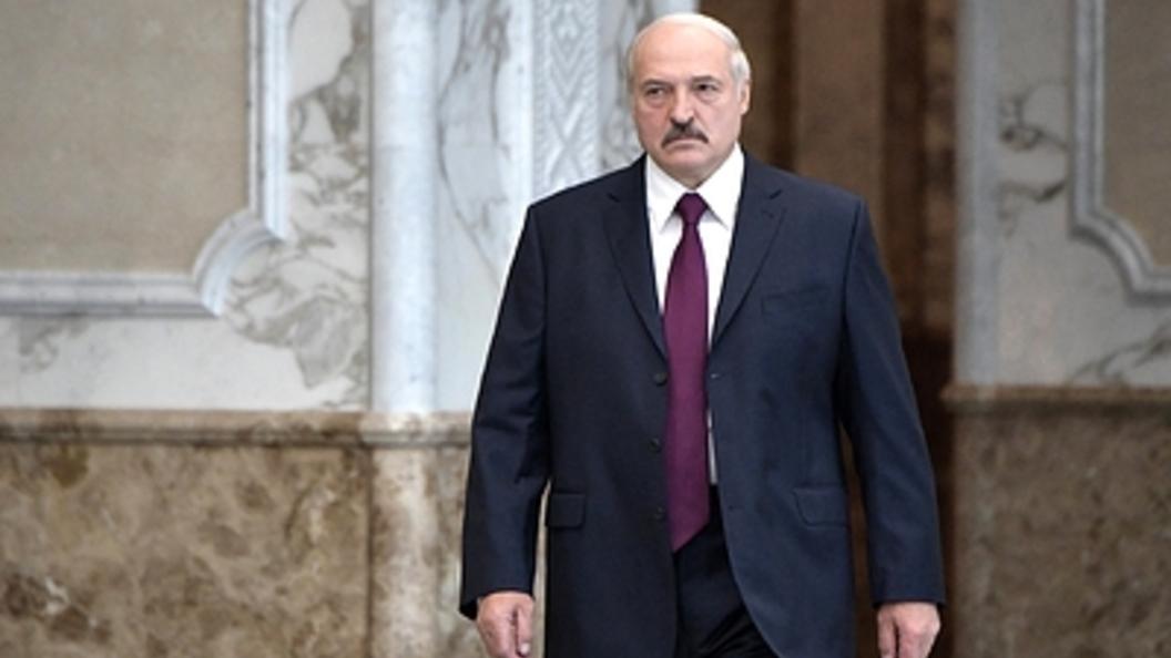 Картинки по запросу Лукашенко потребовал отправить «под нож» трех человек за коровий «концлагерь»