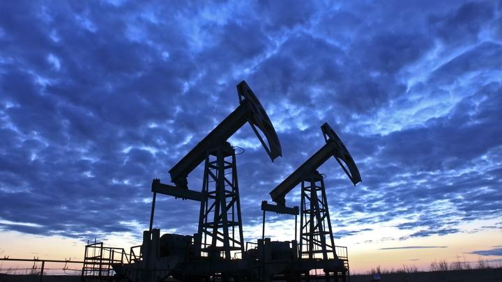 Может привести к коллапсу: На Украине прокомментировали запрет России на экспорт нефти