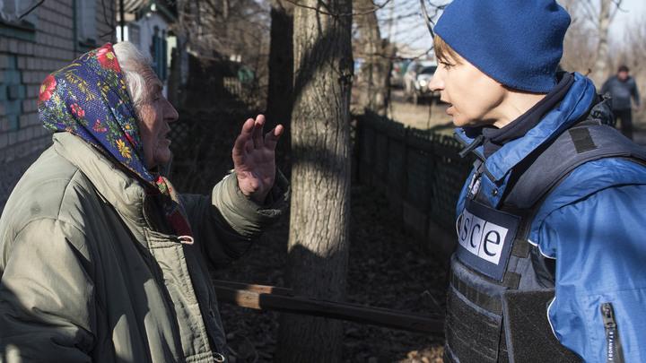В бундестаге поставили под сомнение политический нейтралитет организаций, которые занимаются правами человека в ДНР и Крыму