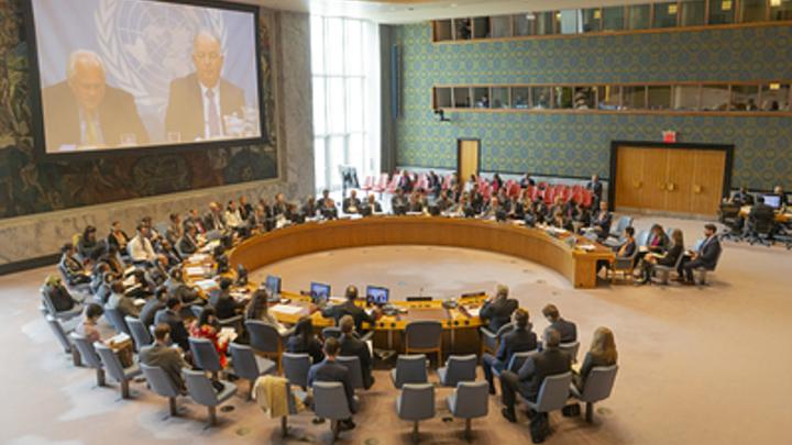 ООН предложила подарить цветы в ответ на истерику Киева о ползущей в Донбасс аннексии