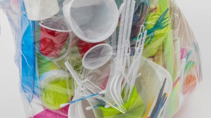 Россию оставят без пластиковой посуды и пакетов? В Минприроды анонсировали новый запрет