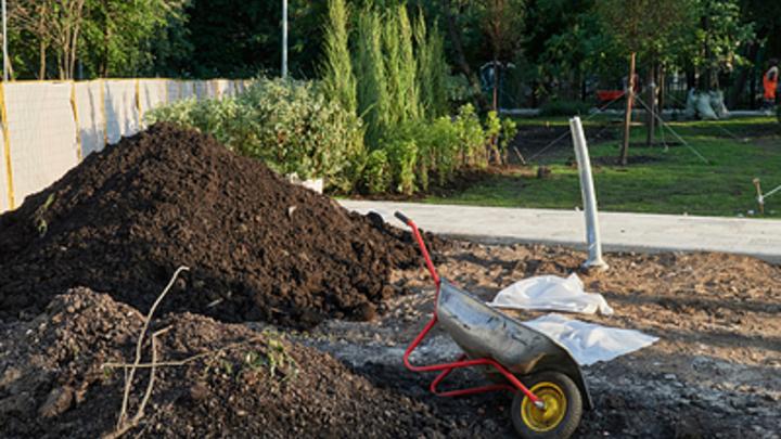 Излишки земли - в собственность, межевание - проще: Путин одобрил новшества кадастровых работ