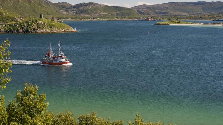 Жить, часов не наблюдая: В Норвегии хотят создать первый в мире остров безвременья