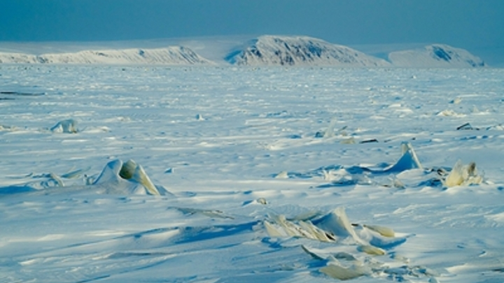 Пока только одни лишайники: Ученые нашли в Антарктиде вход в затерянный мир