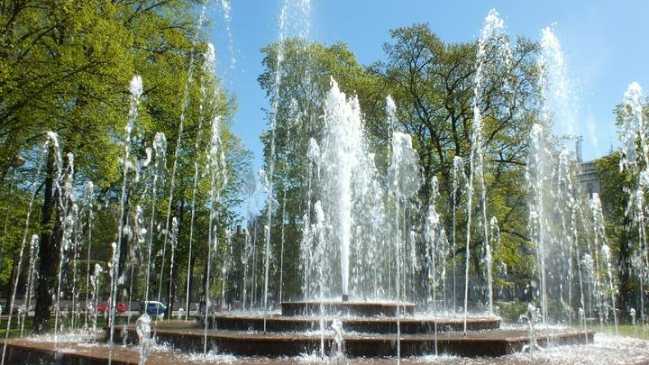 Все играли в одном фонтане: В Роспотребнадзоре назвали причину массового отравления детей в Хабаровске
