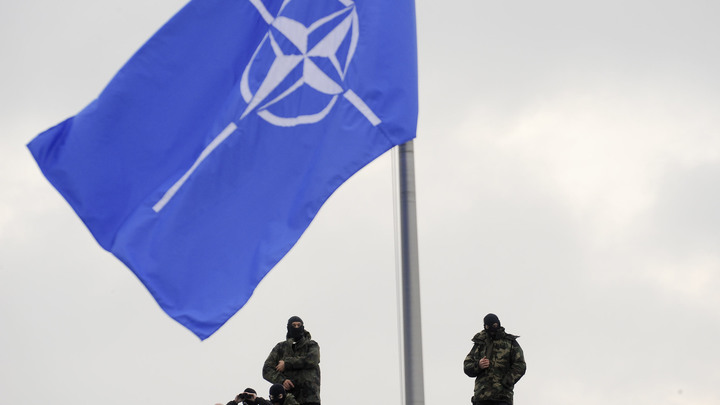 Панацее мешает коррупция: Коротченко о падении веры украинцев в НАТО
