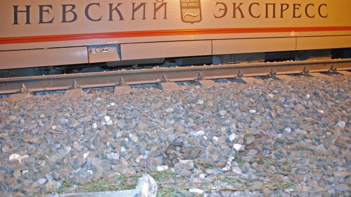 Такое я видел только в страшных фильмах: Взрыв раскидал сотни пассажиров Невского экспресса по вагонам, в коридорах - недвижные тела