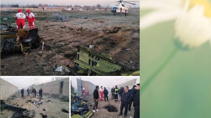 Все погибли: на месте крушения Боинга в Иране началась поисковая операция - журналисты предоставили фото