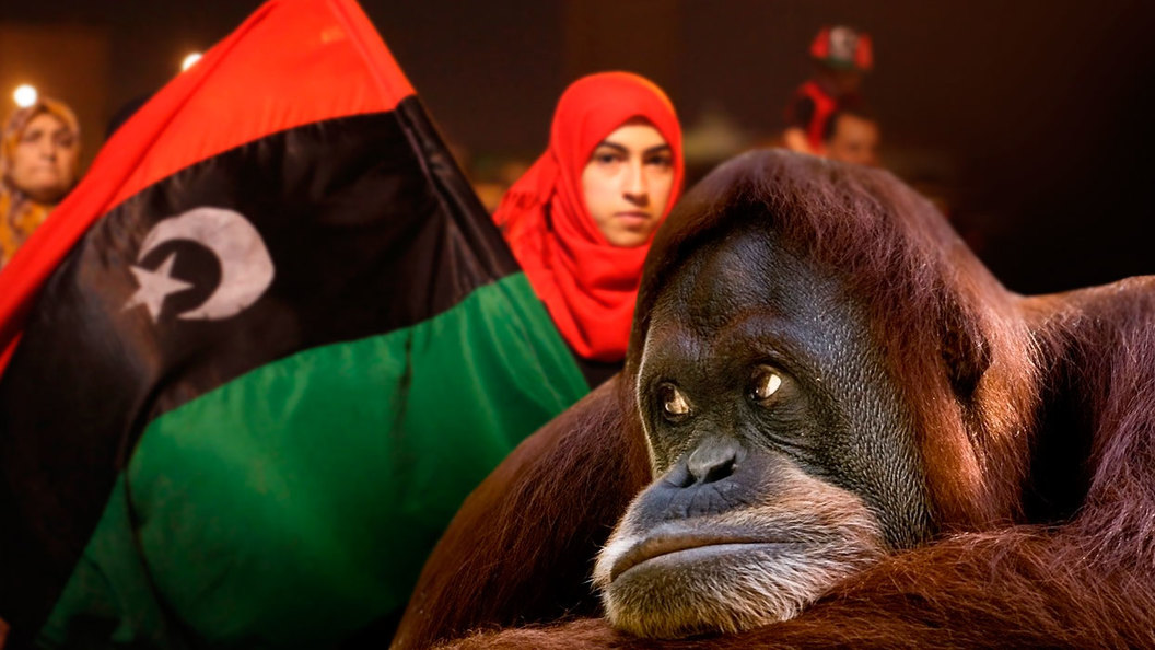 Ливия: Обезьянья война