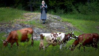 Юрий Пронько: Если у вас две коровы, вы очень богатый человек