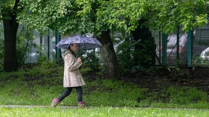 В Челябинскую область ждет порывистый ветер и дождь