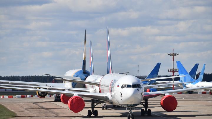 Новосибирский предприниматель купил два списанных самолета. Для чего они ему нужны
