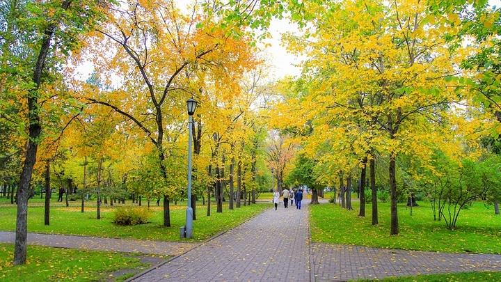 На озеленение Новосибирска мэрия потратит 2,2 млрд рублей