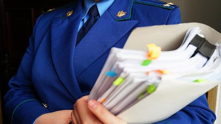 Жительниц Новосибирской области отправили под суд за махинации с маткапиталом на 24 млн рублей