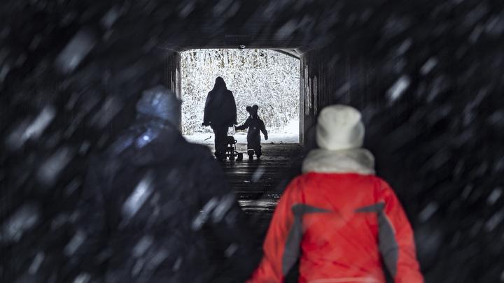 Власти Новосибирской области вывели на дороги более 800 единиц снегоуборочной техники